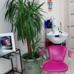Salon krasoty Janika 14 150x150 - Галерея